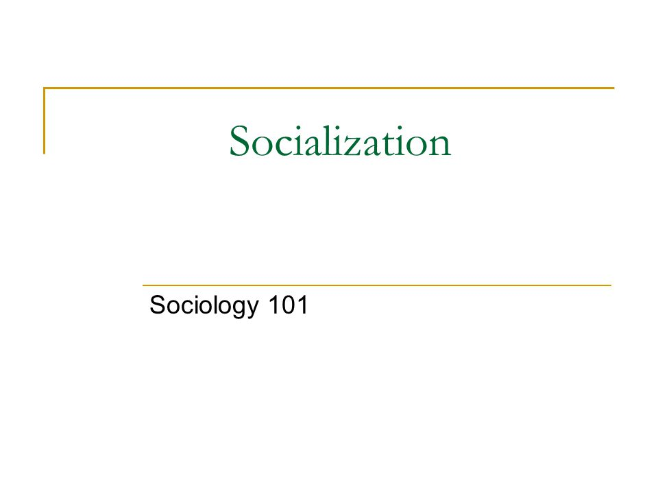 Socialization Sociology 101