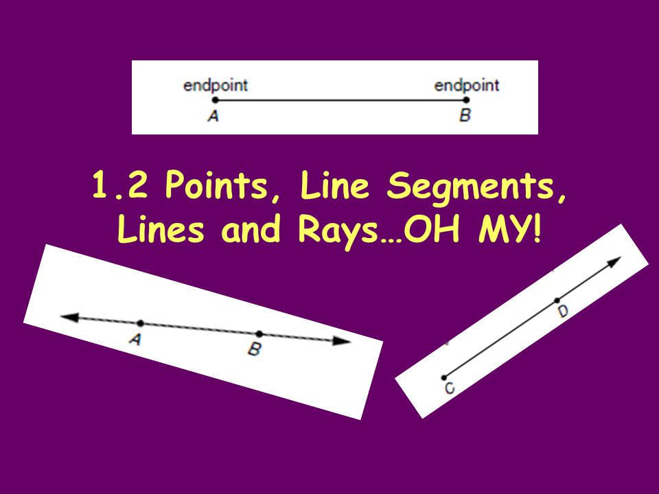 1.2 Points, Line Segments, Lines and Rays…OH MY!