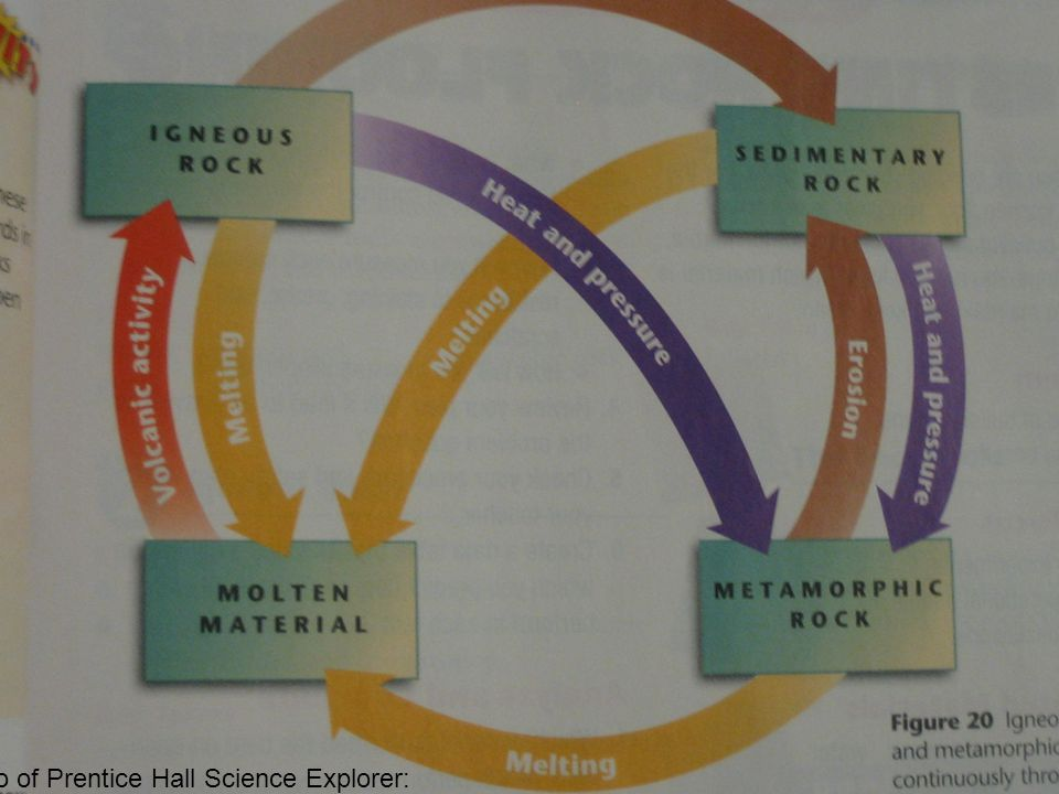 Photo of Prentice Hall Science Explorer: