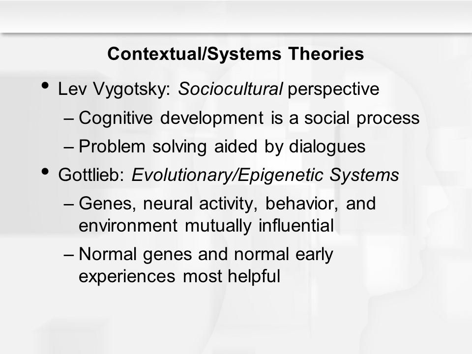 Contextual/Systems Theories