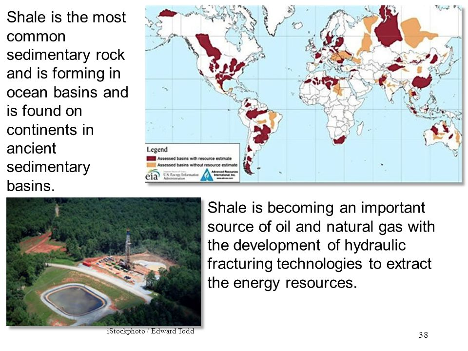 Shale is the most common sedimentary rock and is forming in ocean basins and is found on continents in ancient sedimentary basins.