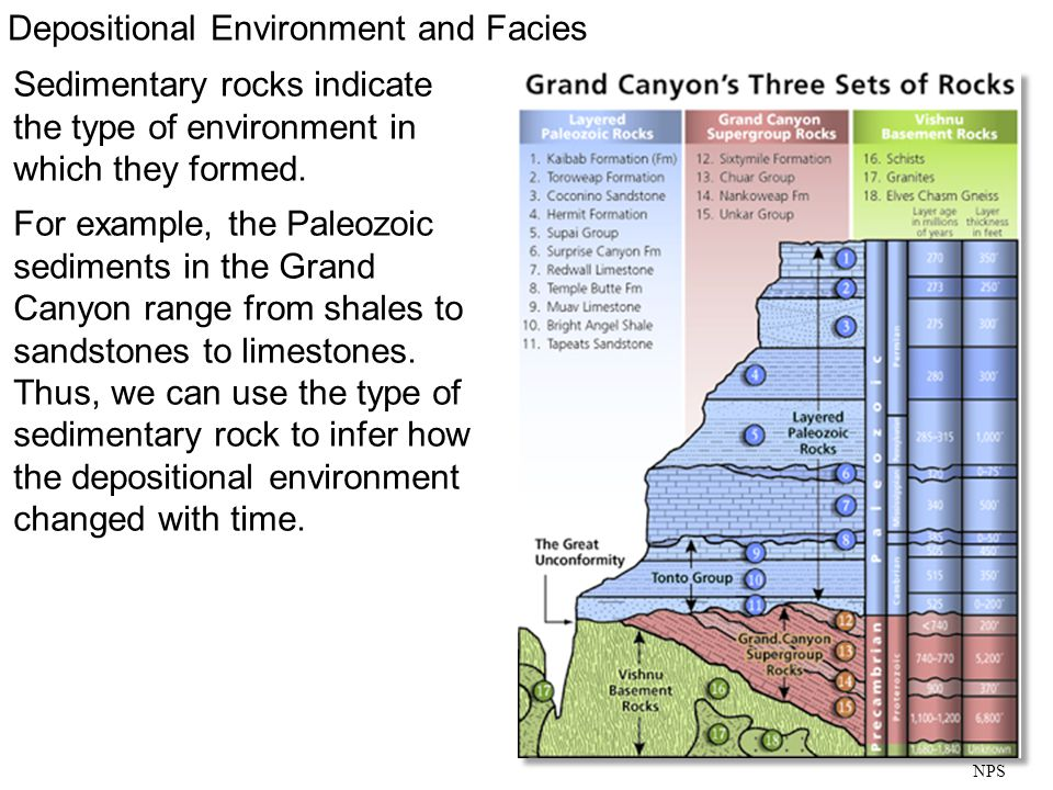 Depositional Environment and Facies