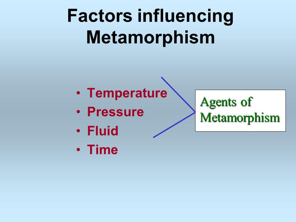 Factors influencing Metamorphism