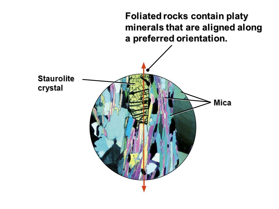 Foliated rocks contain platy minerals that are aligned along