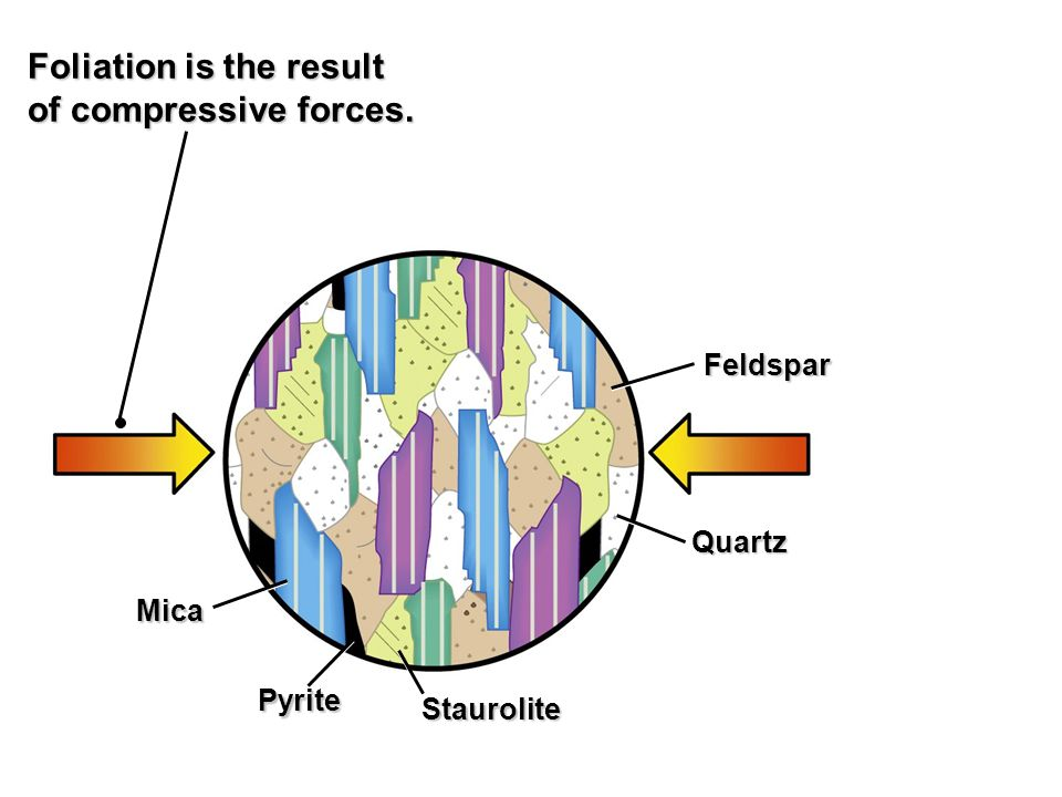 Foliation is the result of compressive forces.