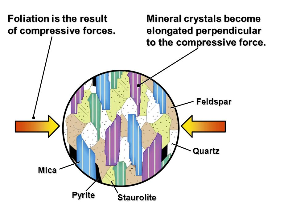 Foliation is the result of compressive forces. Mineral crystals become