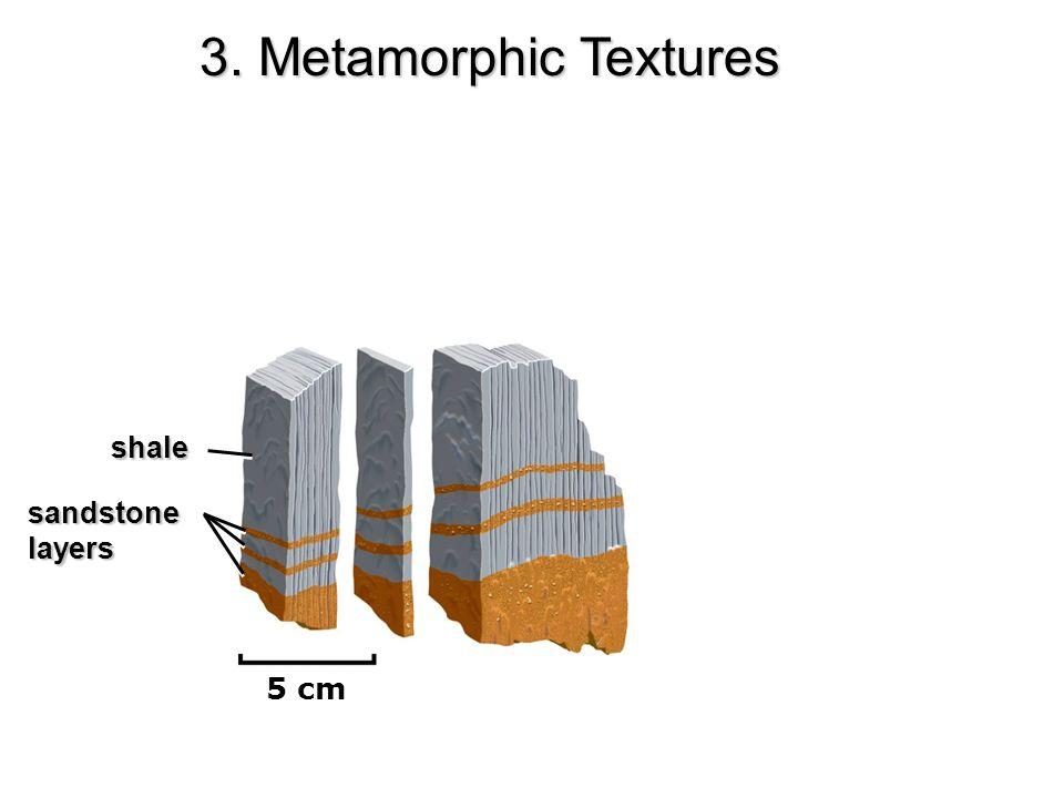 3. Metamorphic Textures shale sandstone layers 5 cm