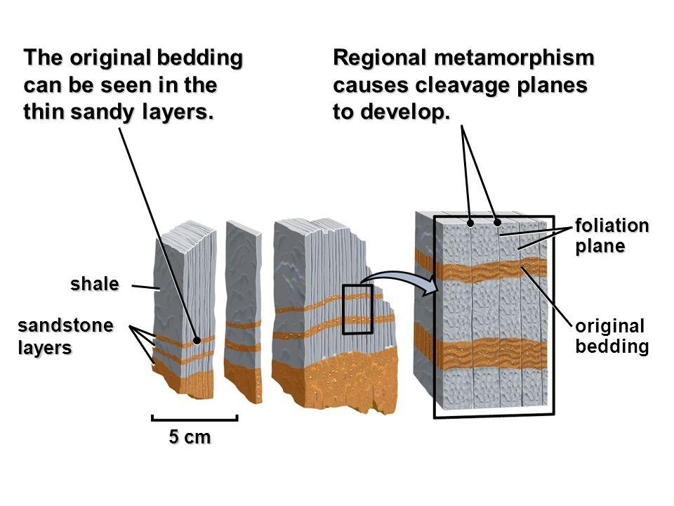 Regional metamorphism causes cleavage planes to develop.