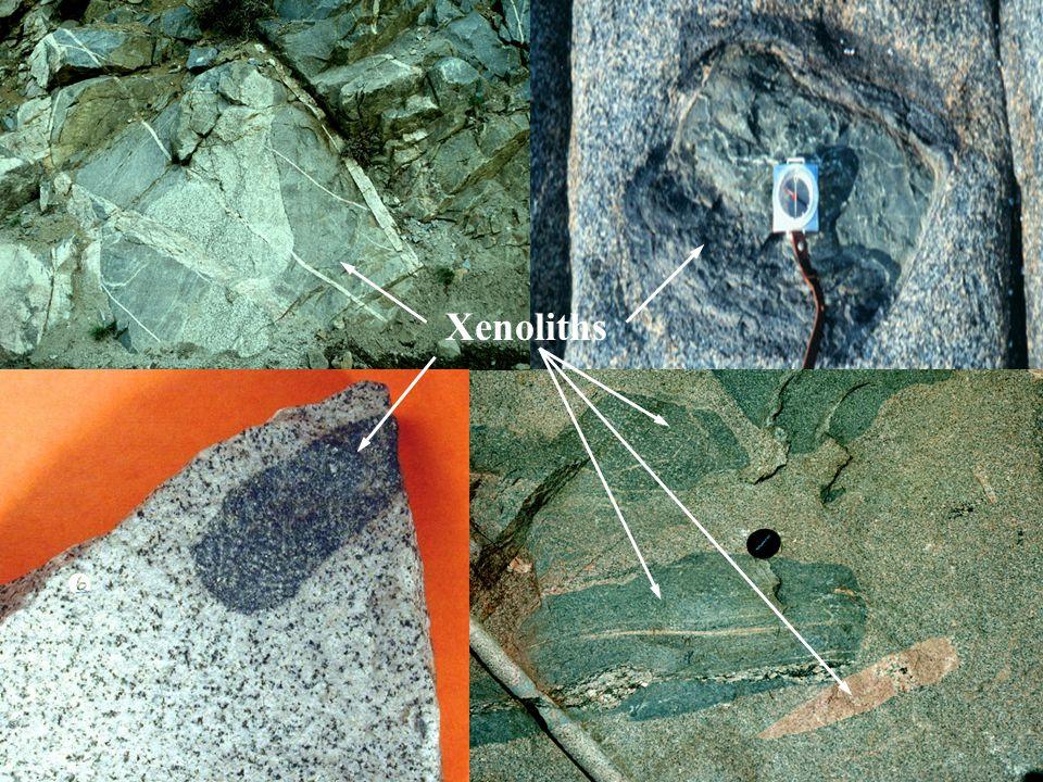 Xenoliths
