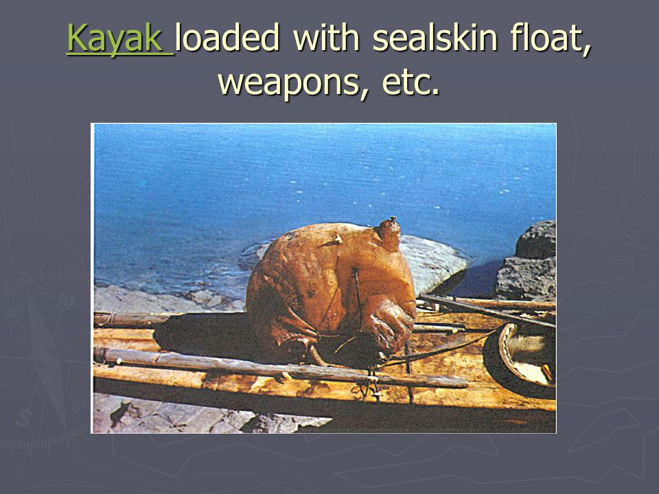 Kayak loaded with sealskin float, weapons, etc.