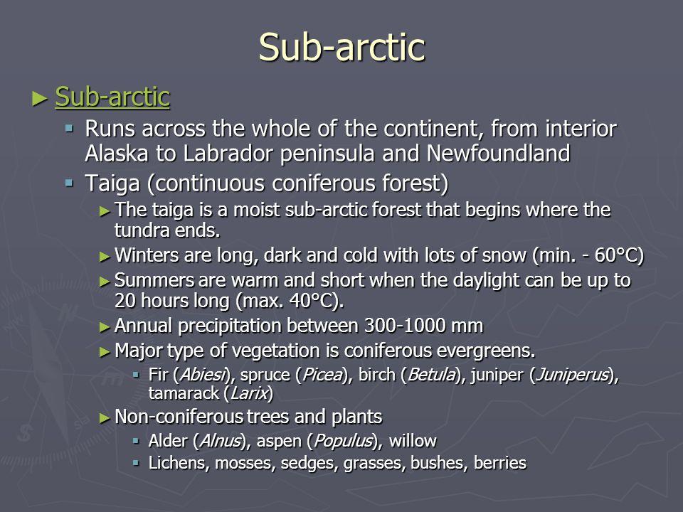 Sub-arctic Sub-arctic