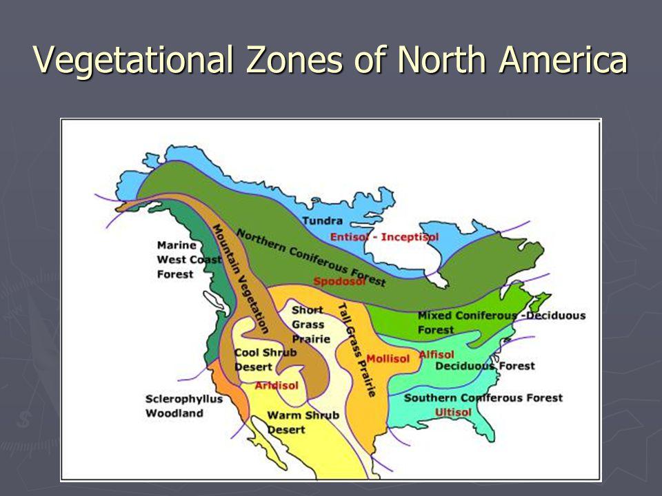 Vegetational Zones of North America