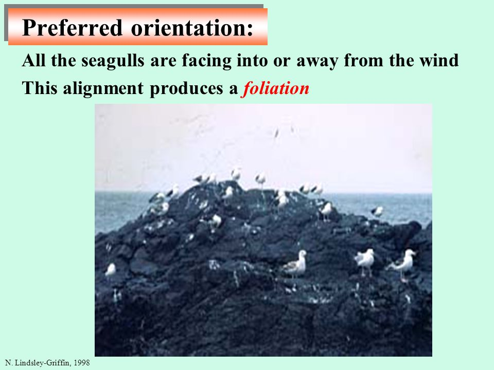 Preferred orientation: