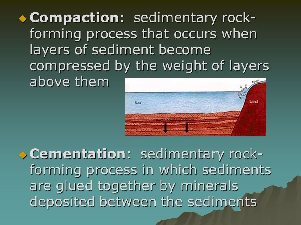 Compaction: sedimentary rock-forming process that occurs when layers of sediment become compressed by the weight of layers above them