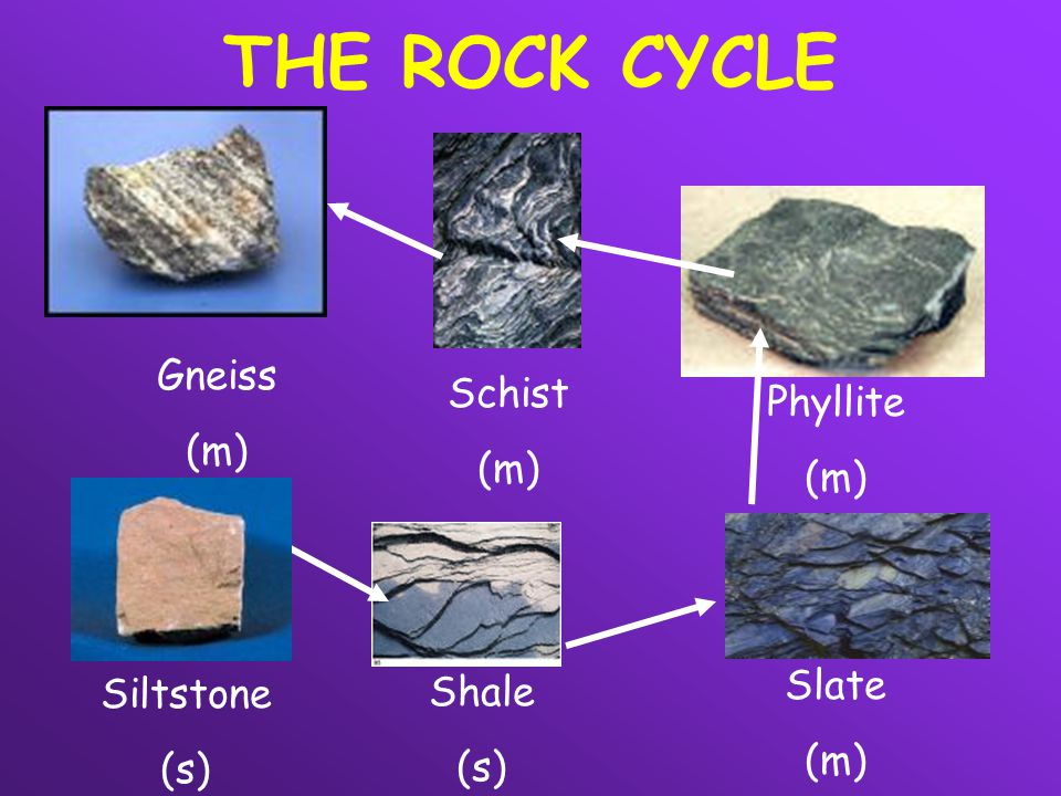 THE ROCK CYCLE Gneiss Schist (m) Phyllite (m) (m) Slate Siltstone