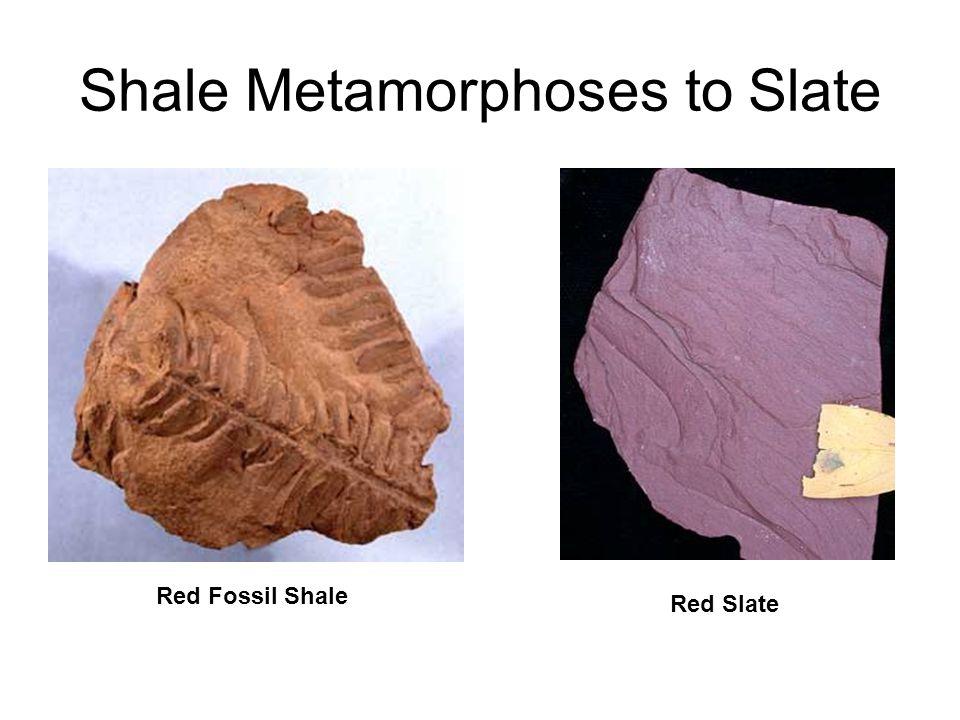 Shale Metamorphoses to Slate
