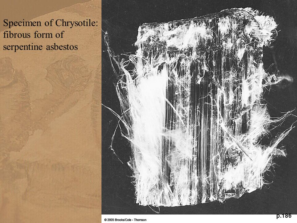 Specimen of Chrysotile: fibrous form of serpentine asbestos