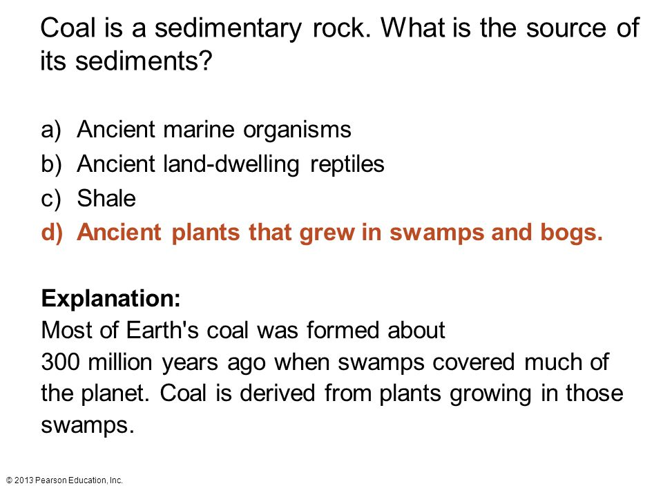 Coal is a sedimentary rock. What is the source of its sediments