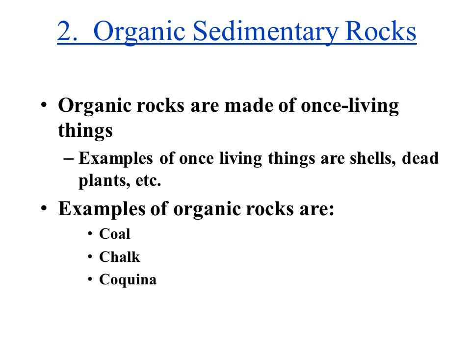 2. Organic Sedimentary Rocks