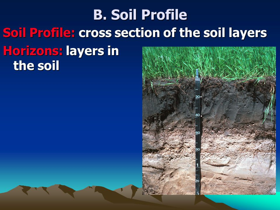 B. Soil Profile Soil Profile: cross section of the soil layers