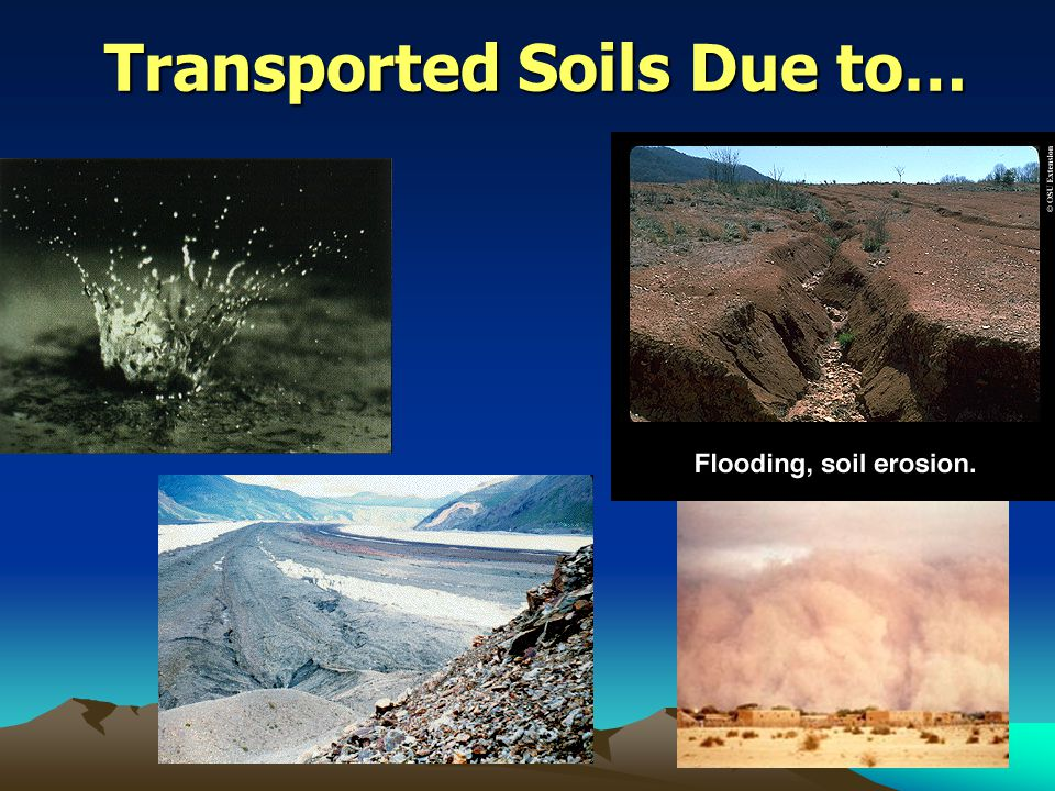 Transported Soils Due to…