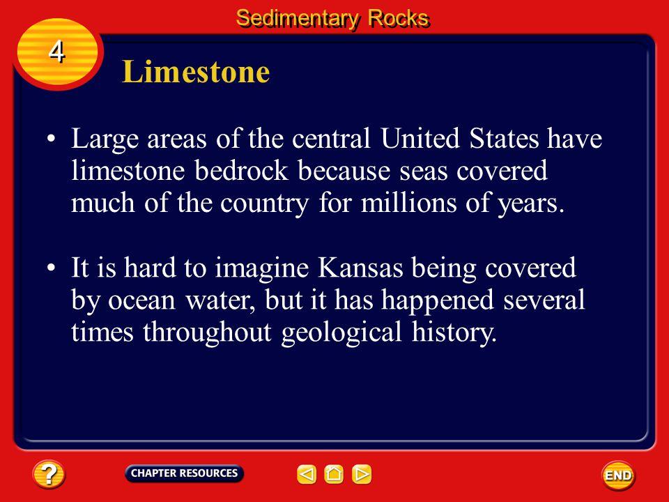 Sedimentary Rocks 4. Limestone.