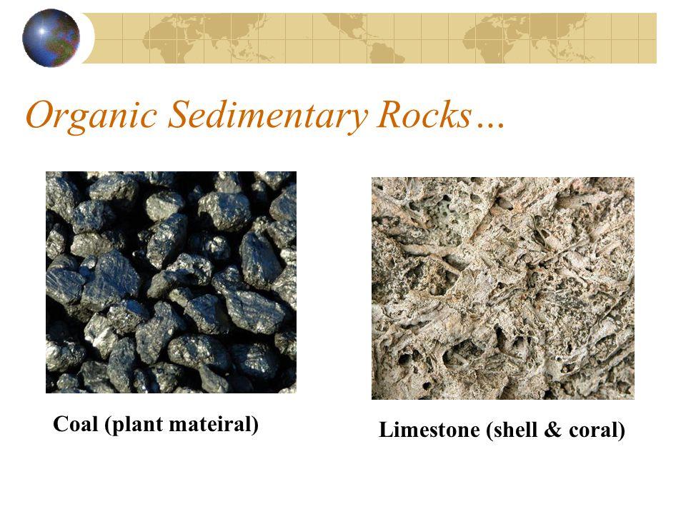 Organic Sedimentary Rocks…