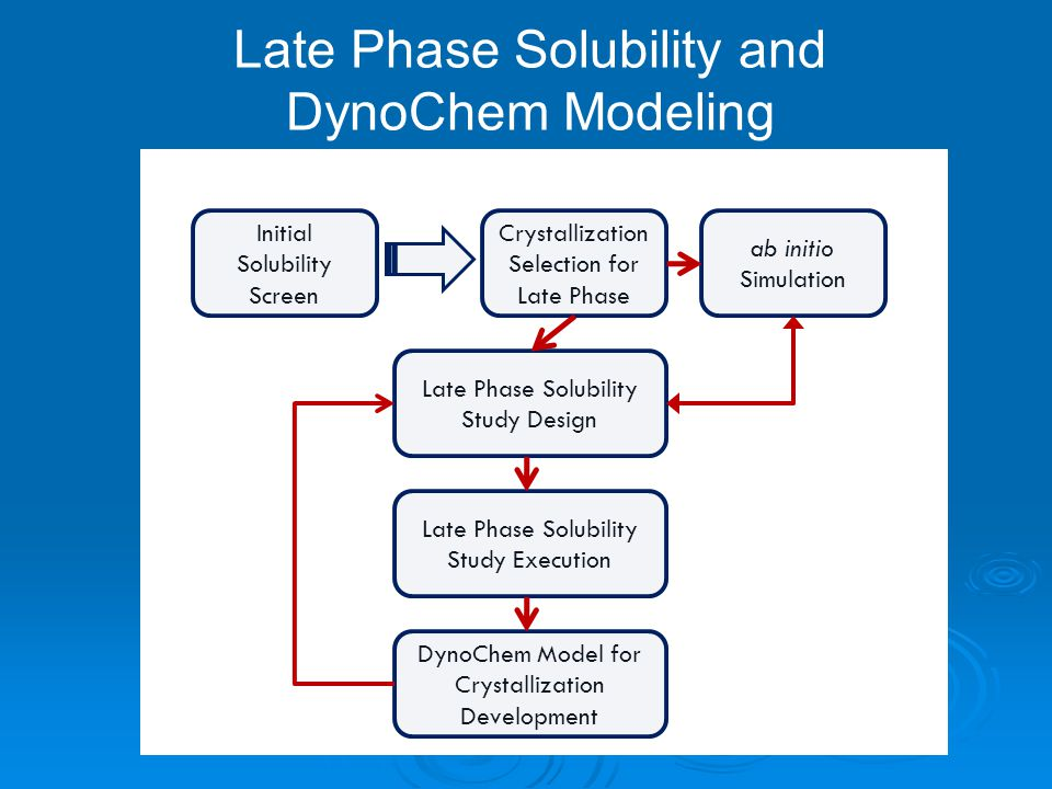 Late Phase Solubility and DynoChem Modeling