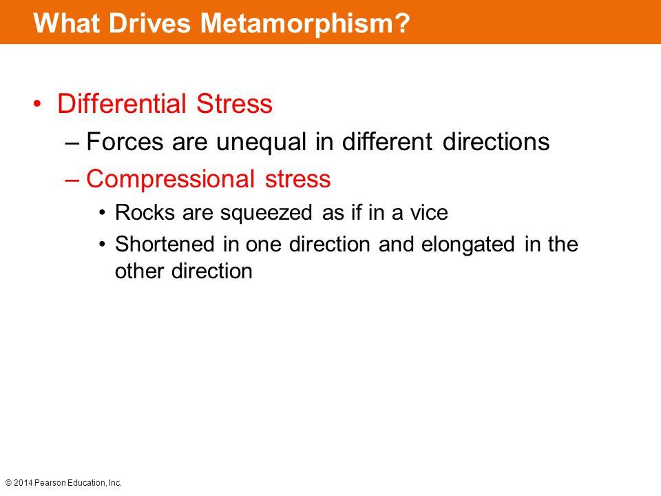 What Drives Metamorphism