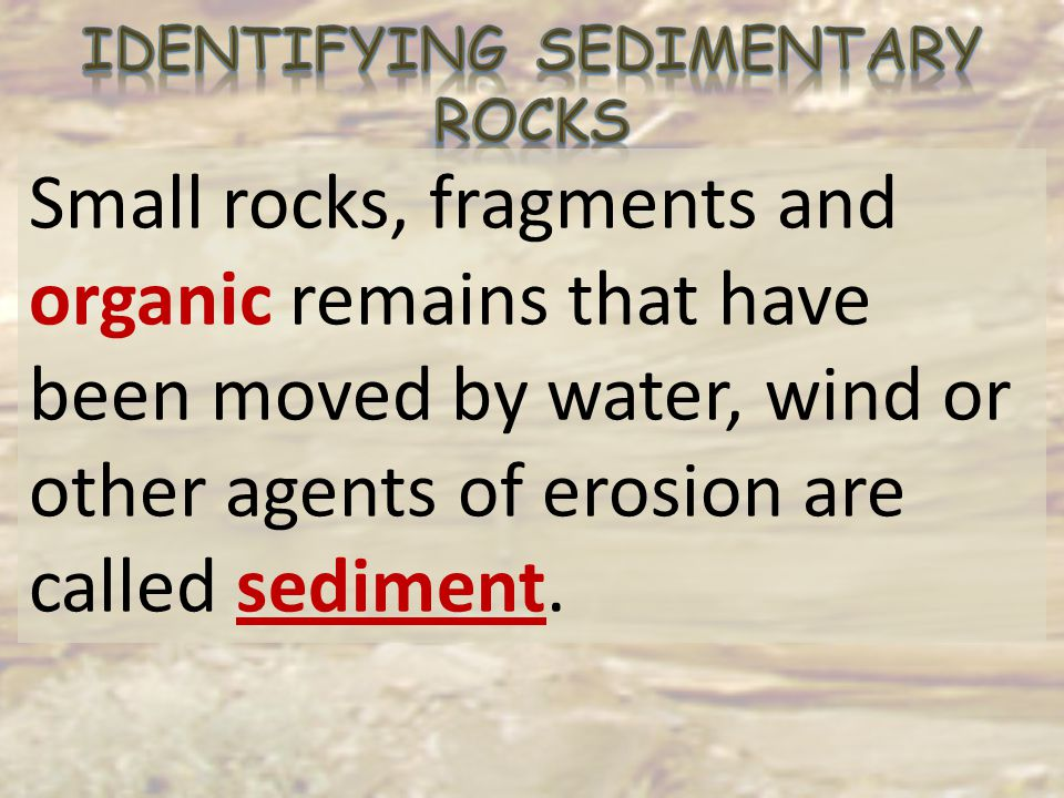 Identifying Sedimentary Rocks