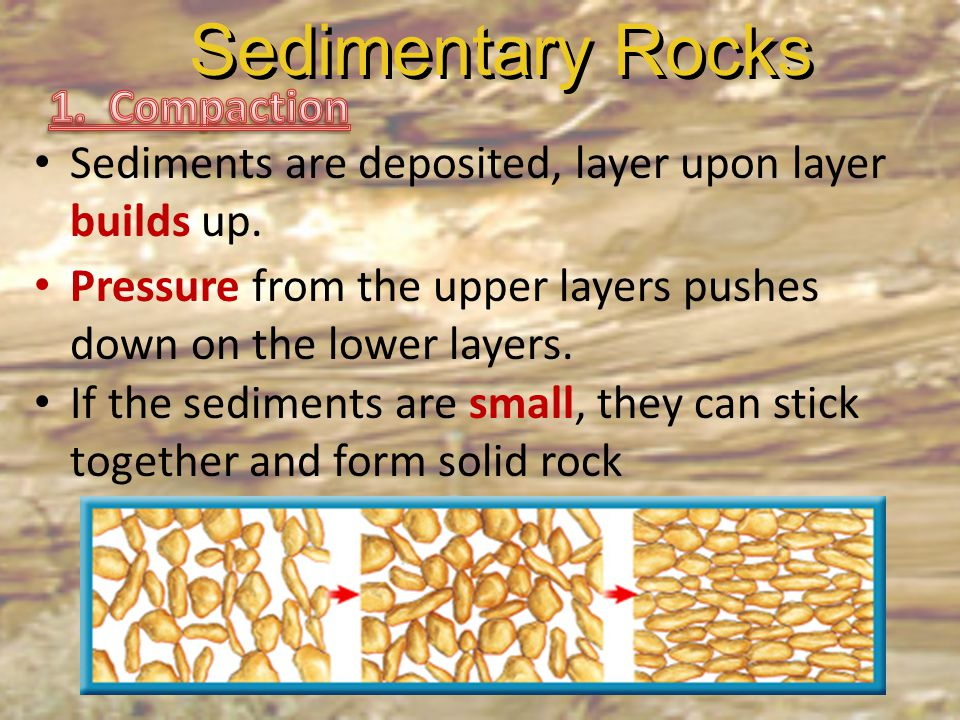 Sedimentary Rocks 1. Compaction