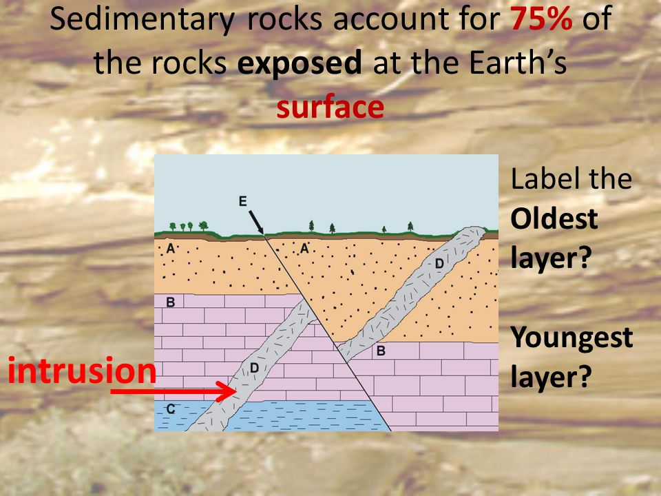 Sedimentary rocks account for 75% of the rocks exposed at the Earth's surface