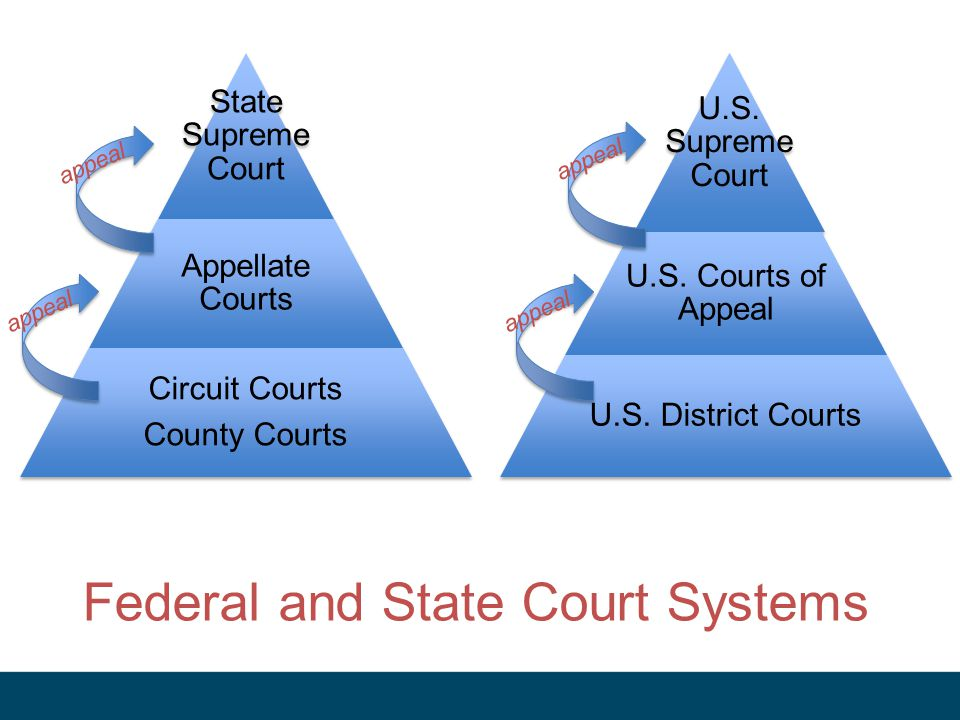 Federal and State Court Systems
