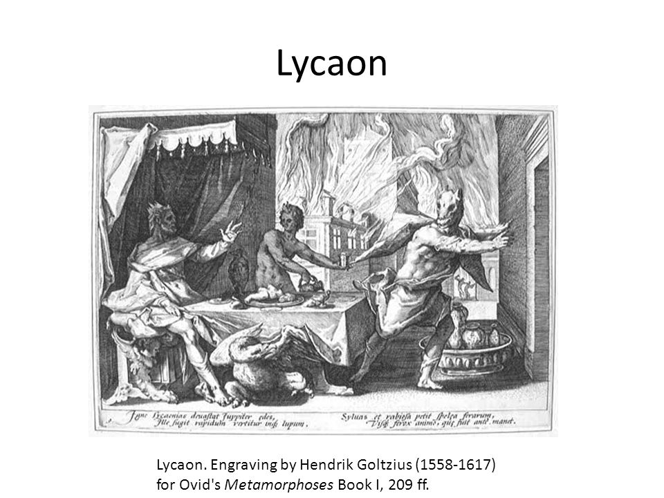 Lycaon Lycaon. Engraving by Hendrik Goltzius (1558-1617) for Ovid s Metamorphoses Book I, 209 ff.