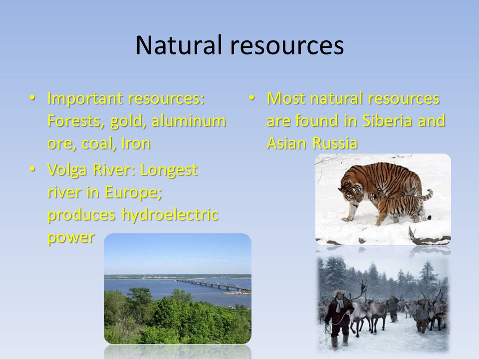 Natural resources Important resources: Forests, gold, aluminum ore, coal, Iron. Volga River: Longest river in Europe; produces hydroelectric power.
