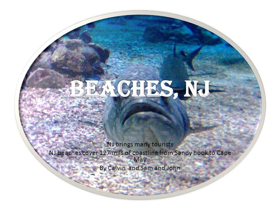 BEACHES, NJ NJ brings many tourists