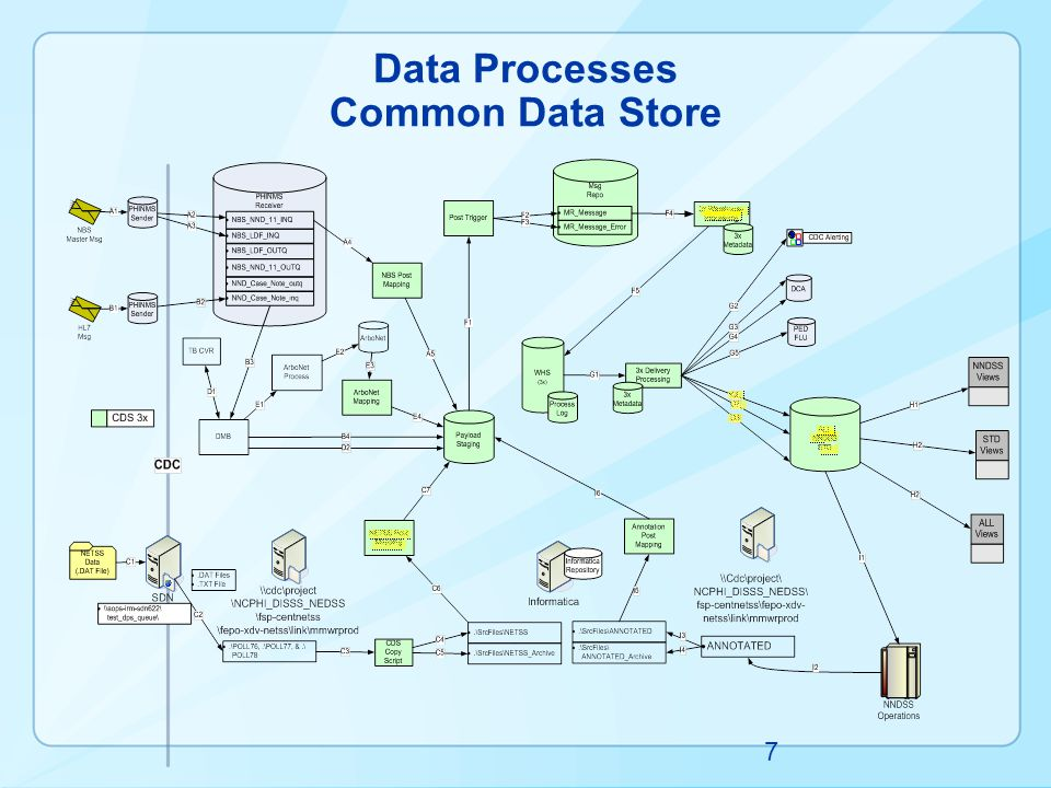 Data Processes Common Data Store