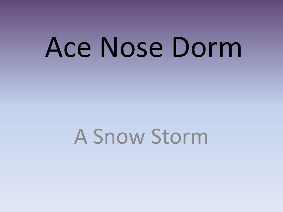 Ace Nose Dorm A Snow Storm