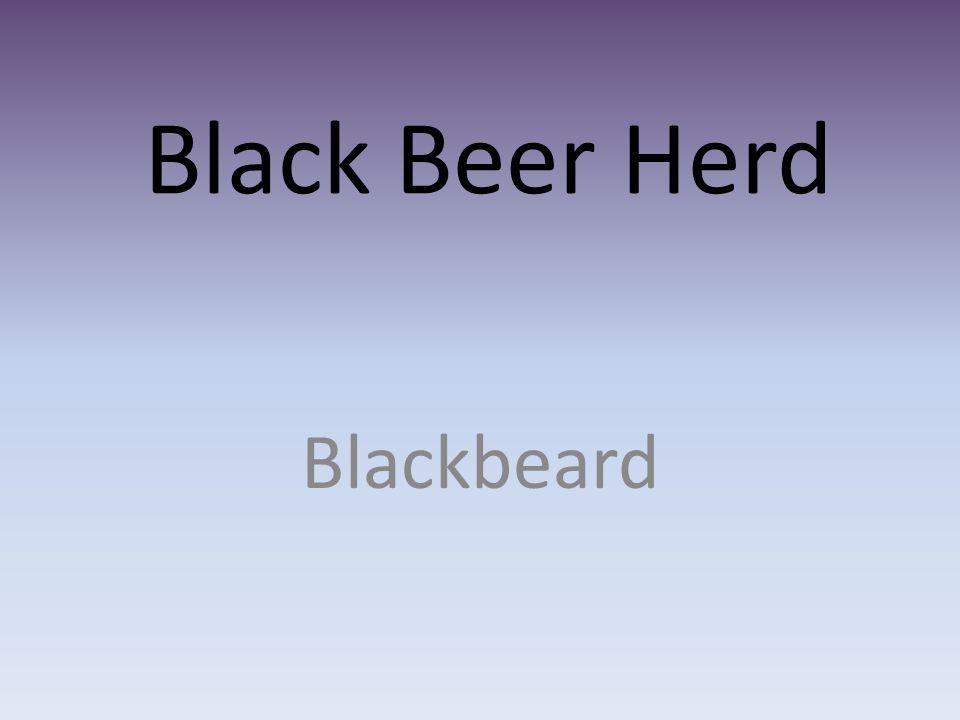 Black Beer Herd Blackbeard