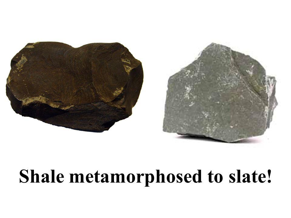 Shale metamorphosed to slate!