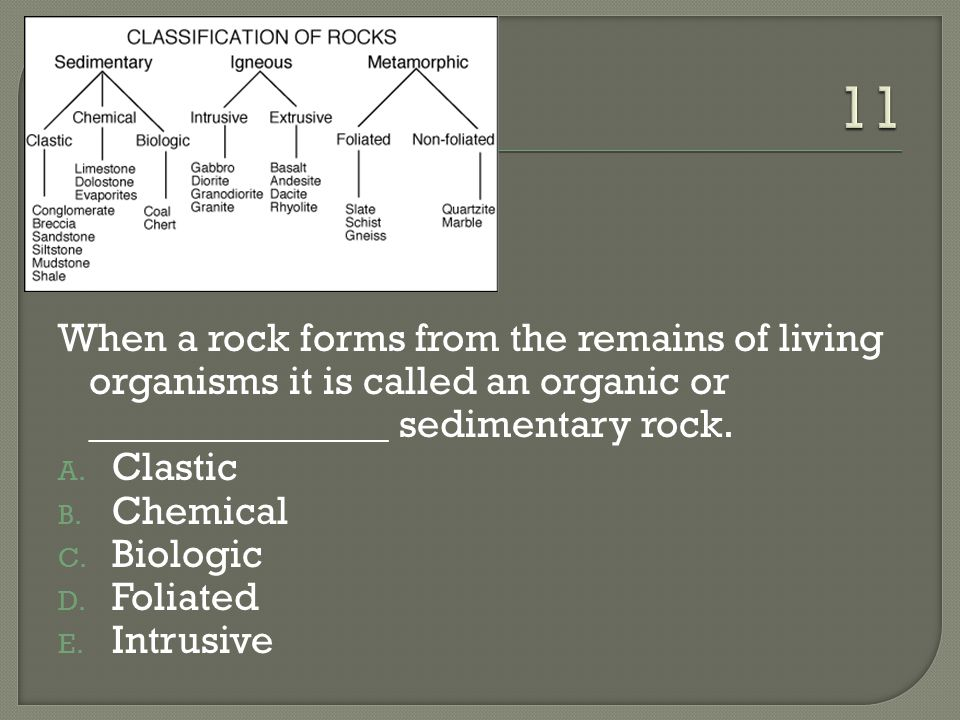 11 When a rock forms from the remains of living organisms it is called an organic or _______________ sedimentary rock.