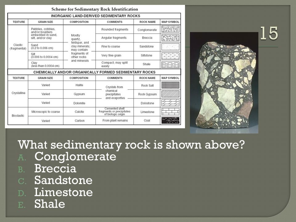 15 What sedimentary rock is shown above Conglomerate Breccia