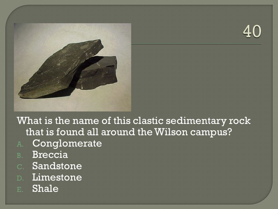 40 What is the name of this clastic sedimentary rock that is found all around the Wilson campus Conglomerate.