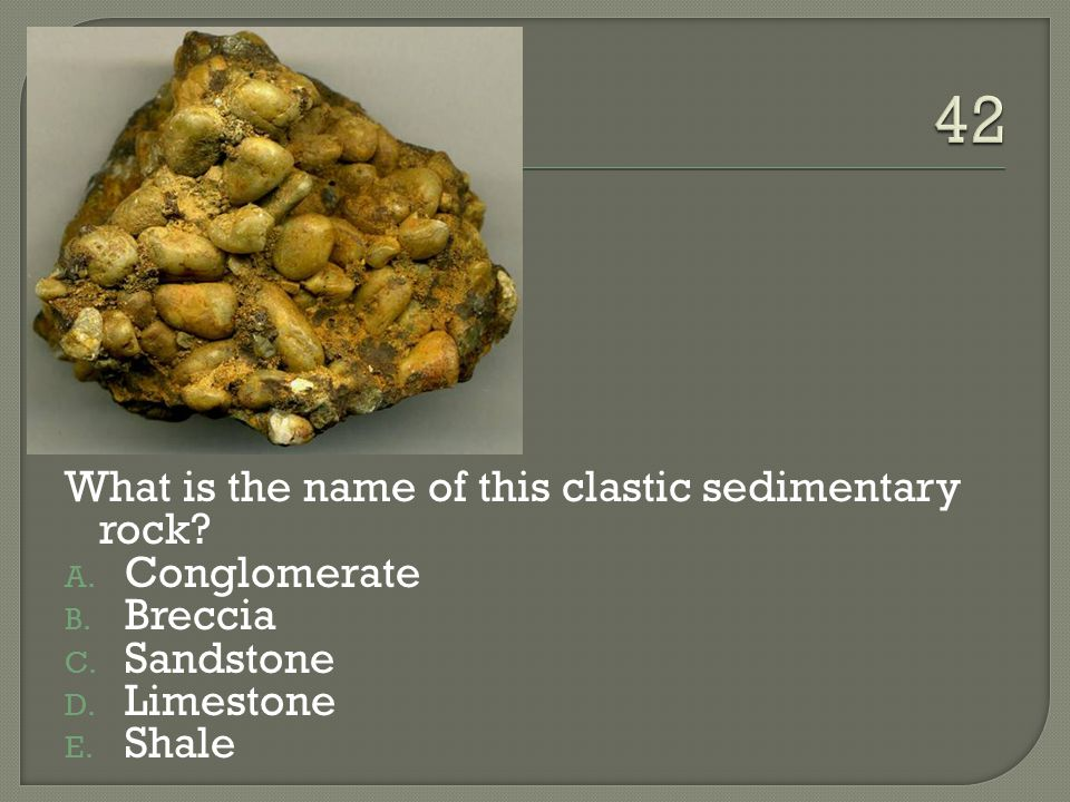 42 What is the name of this clastic sedimentary rock Conglomerate