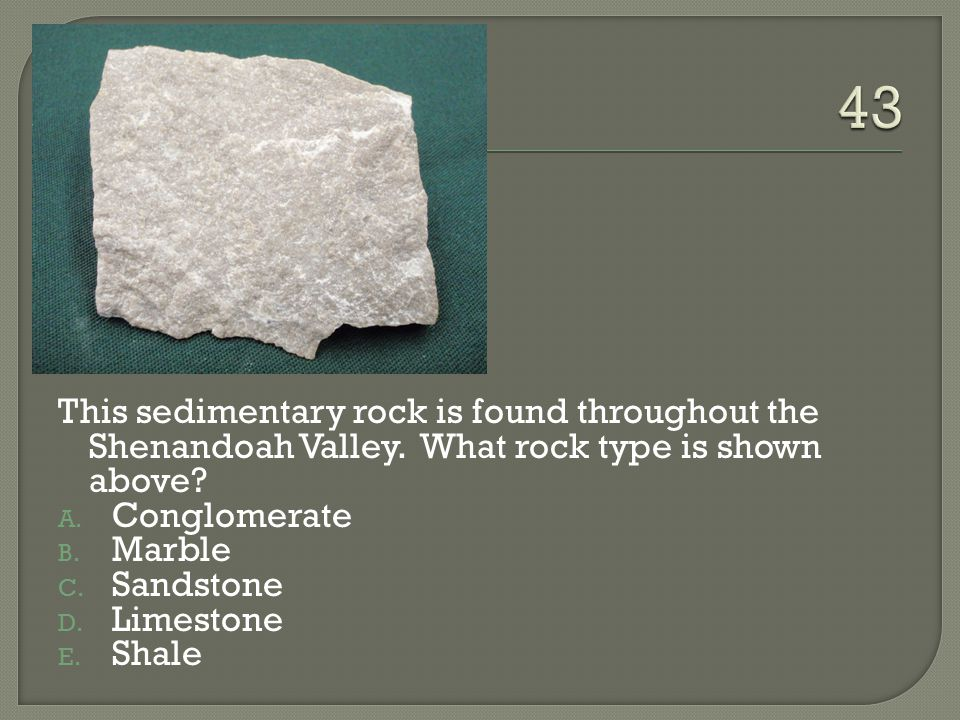 43 This sedimentary rock is found throughout the Shenandoah Valley. What rock type is shown above
