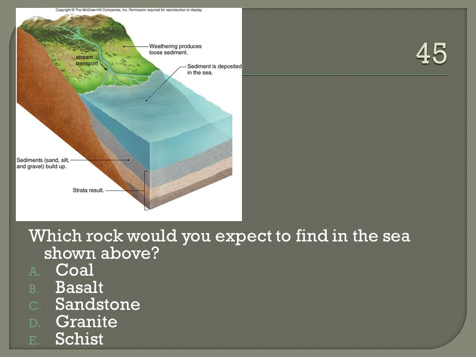 45 Which rock would you expect to find in the sea shown above Coal
