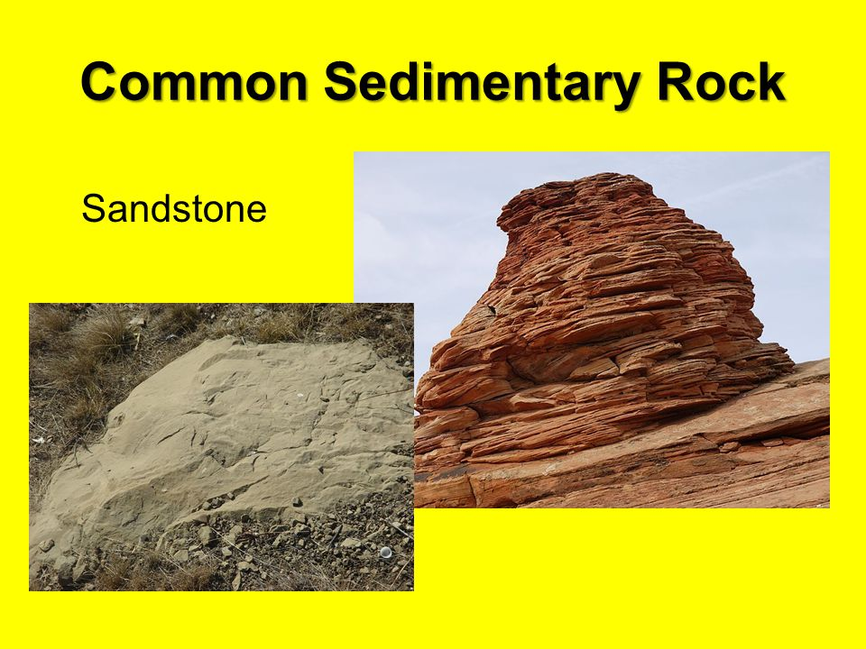 Common Sedimentary Rock