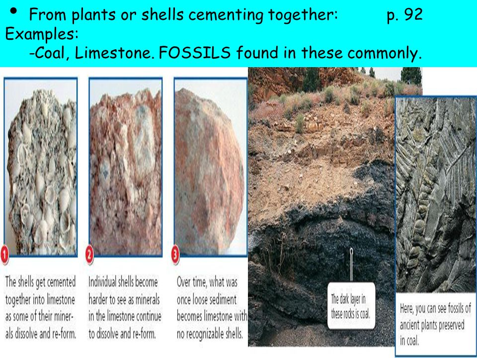 From plants or shells cementing together: p. 92