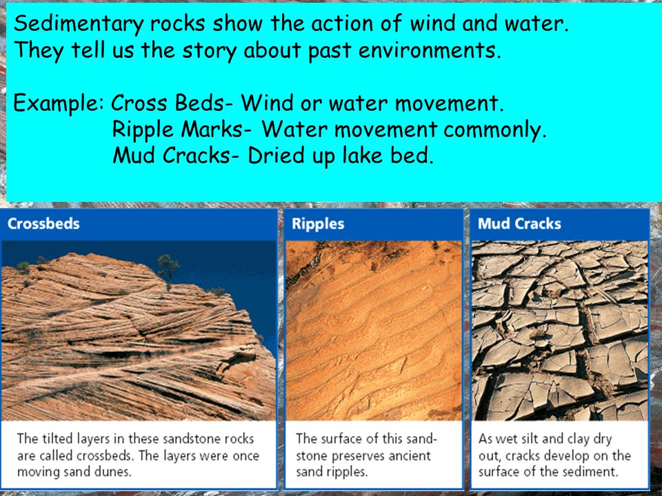 Sedimentary rocks show the action of wind and water.