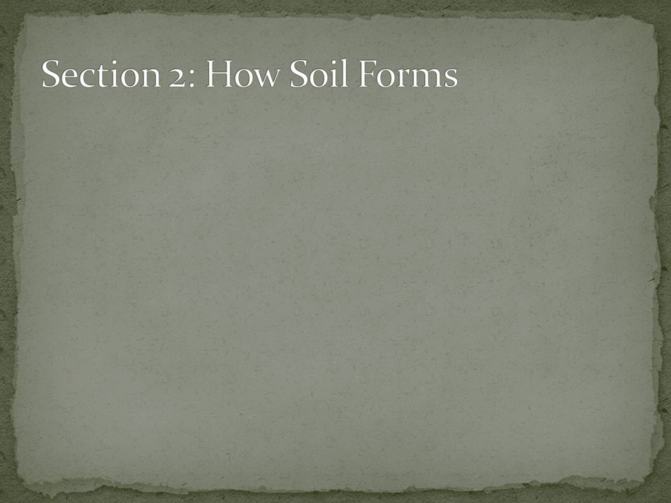 Section 2: How Soil Forms